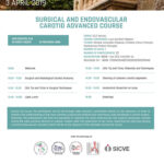 VASA - Surgical and Endovascular Carotid Advanced Course